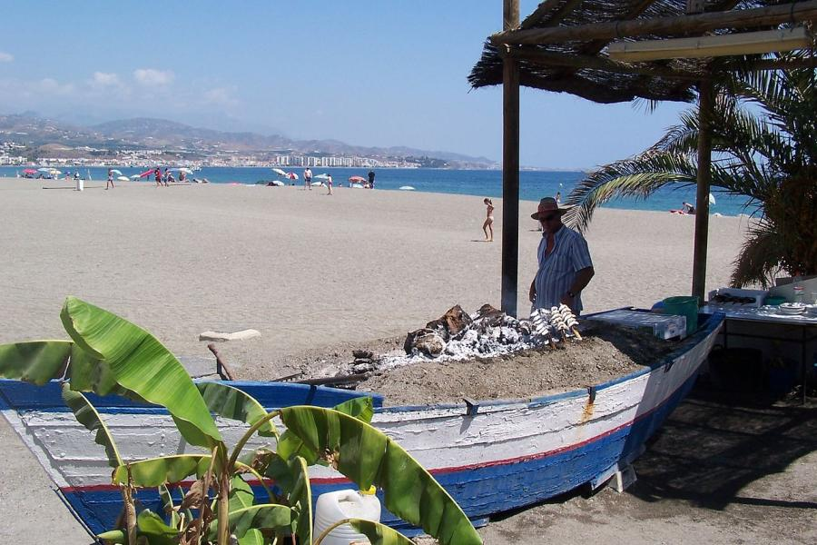 Spend your winter in Torre del Mar, Spain: Is Torre del Mar a good snowbird location? 16