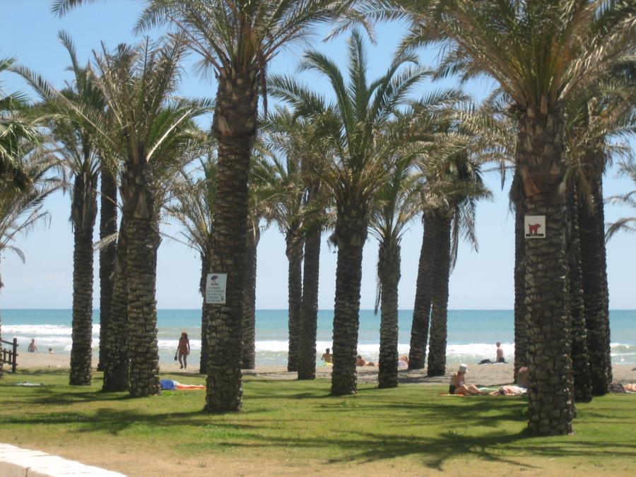 Spend your winter in Torremolinos, Spain: Is Torremolinos a good snowbird location? 17