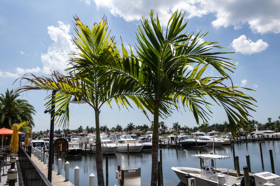Spend your winter in Cape Coral - Florida - Is Cape Coral a good snowbird location 12