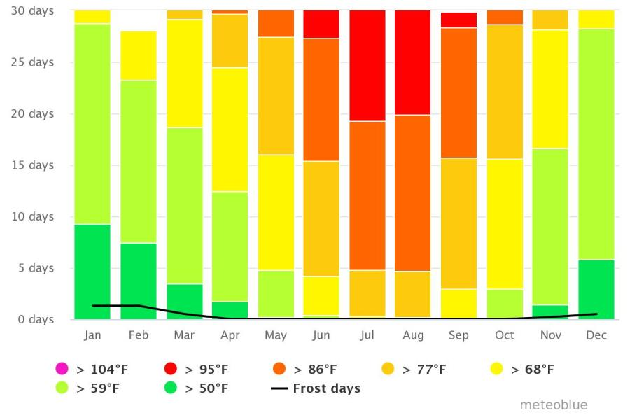 Spend your winter in Conil de la Frontera, Spain: Is Conil de la Frontera a good snowbird location? 7