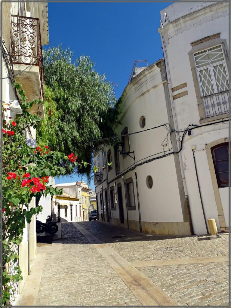 Spend your winter in Loulé, Portugal: Is Loulé a good snowbird location? 17