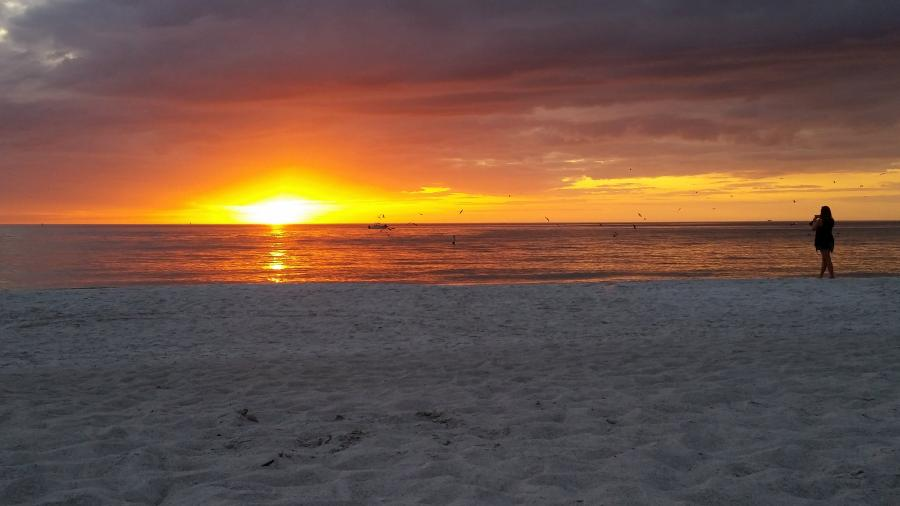 Spend your winter in Madeira Beach - Florida - Is Madeira Beach a good snowbird location 11