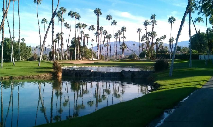 Spend your winter in Palm Springs, California: Is Palm Springs a good snowbird location? 18
