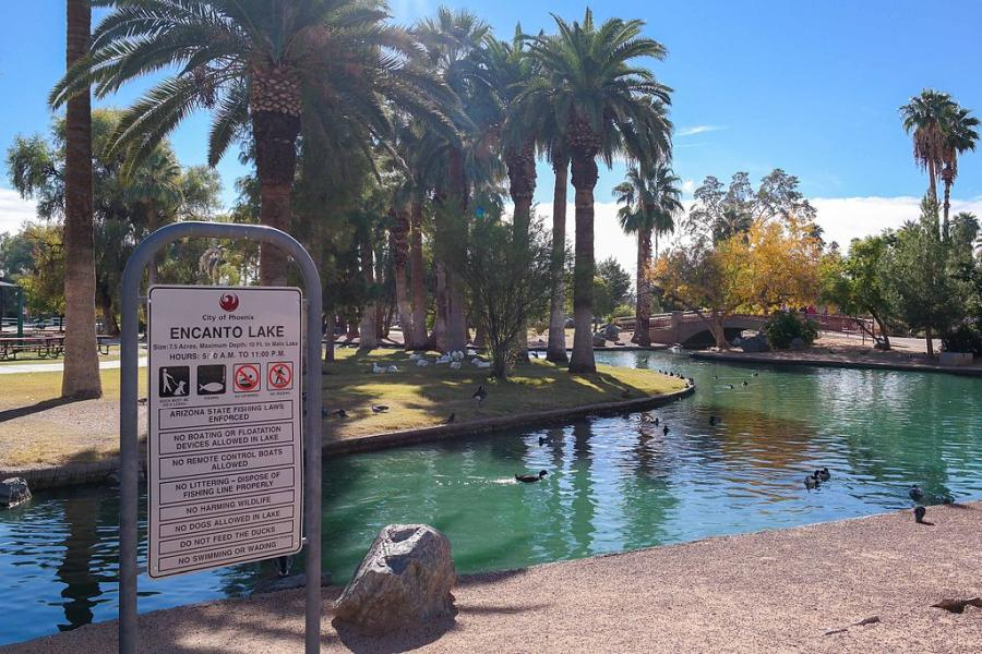 Spend your winter in Phoenix, Arizona: Is Phoenix a good snowbird location? 26