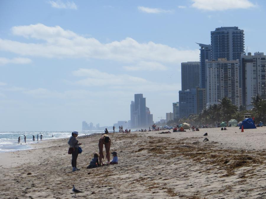 Spend your winter in Hollywood - Florida - Is Hollywood a good snowbird location 1