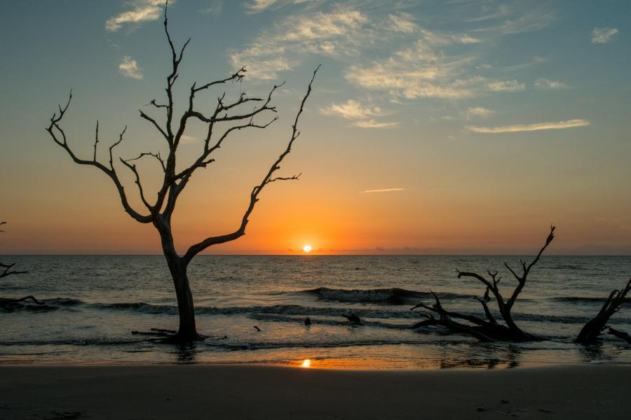 Spend your winter in Jekyll Island - Georgia - Is Jekyll Island a good snowbird location 11