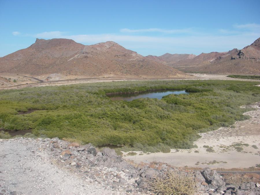 Spend your winter in La Paz - Mexico - Is La Paz a good snowbird location 12