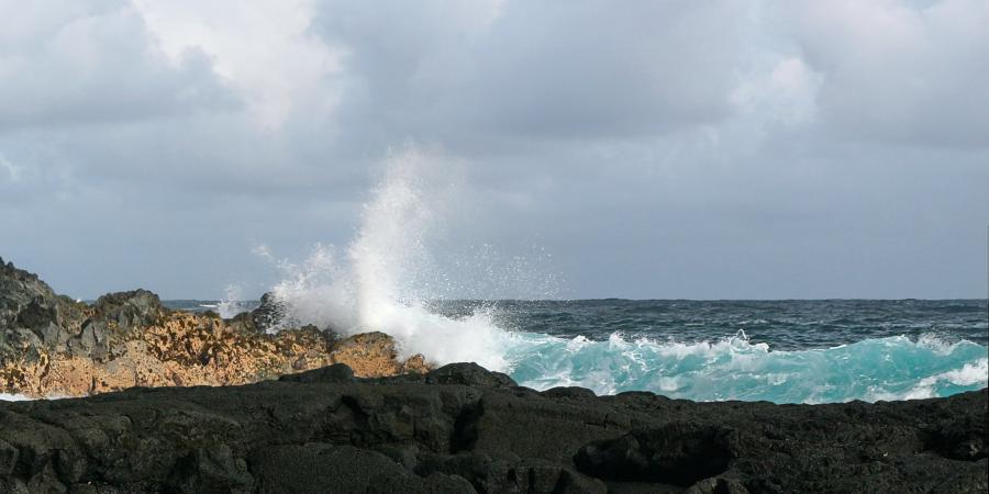 Spend your winter in Pahoa - Hawaii - Is Pahoa a good snowbird location 10