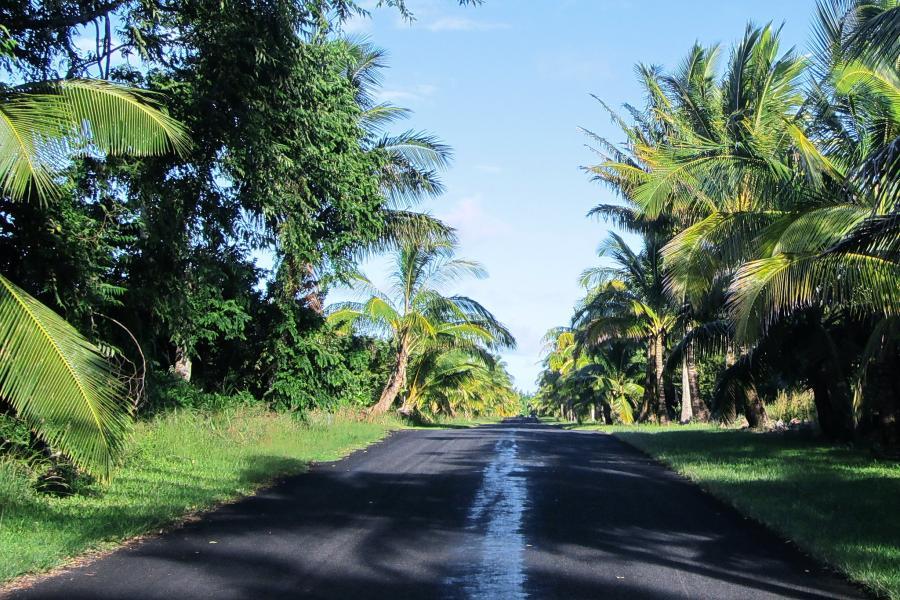 Spend your winter in Pahoa - Hawaii - Is Pahoa a good snowbird location 11
