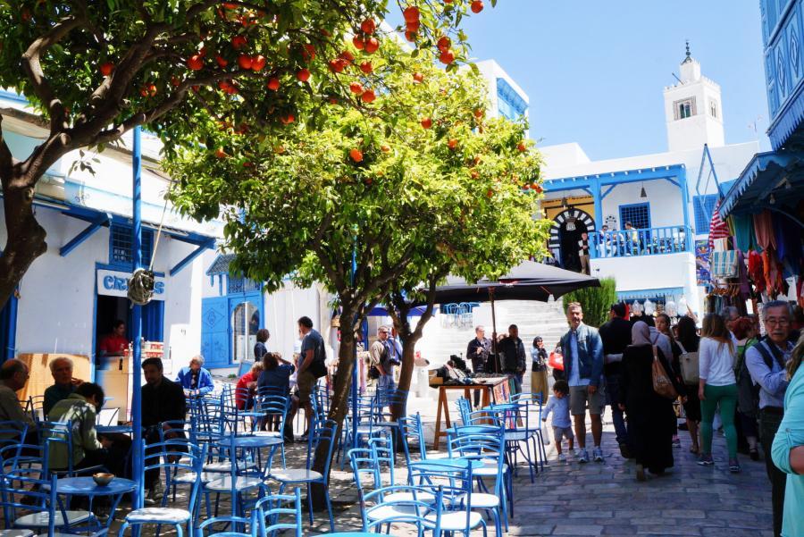 Spend your winter in Tunisia: Is Tunisia a good snowbird location? 15