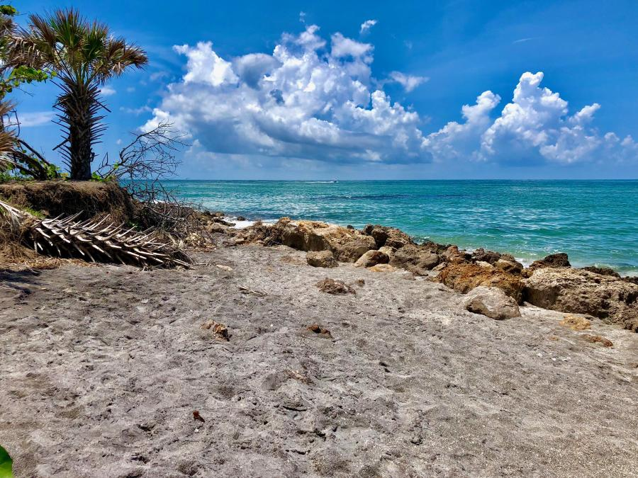 Spend your winter in Venice - Florida - Is Venice a good snowbird location 1