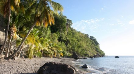 Spend-your-winter-in-Dominica-Is-Dominica-a-good-snowbird-location-1