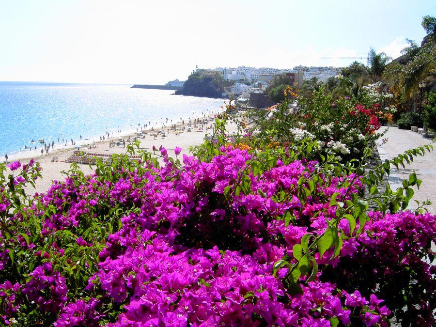 Spend your winter in Fuerteventura, Spain: Is Fuerteventura a good snowbird location? 1