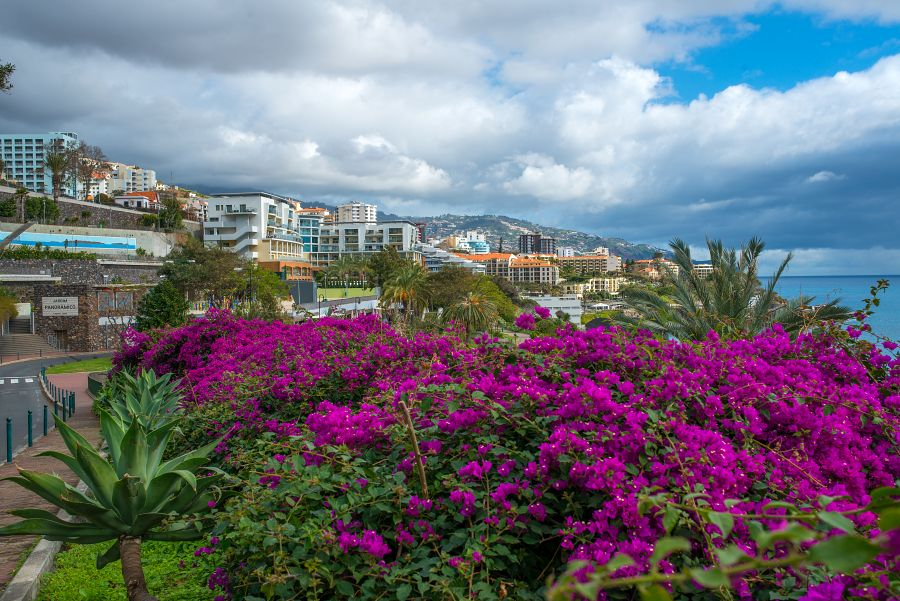 Spend your winter in Funchal - Portugal - Is Funchal a good snowbird location 11