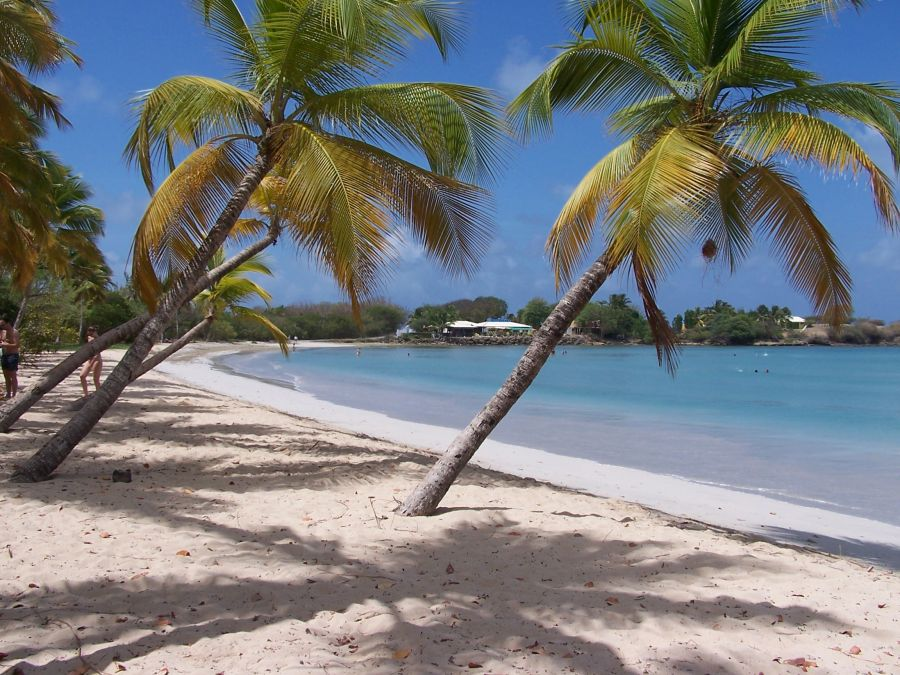 Spend your winter in Martinique - Is Martinique a good snowbird location 12