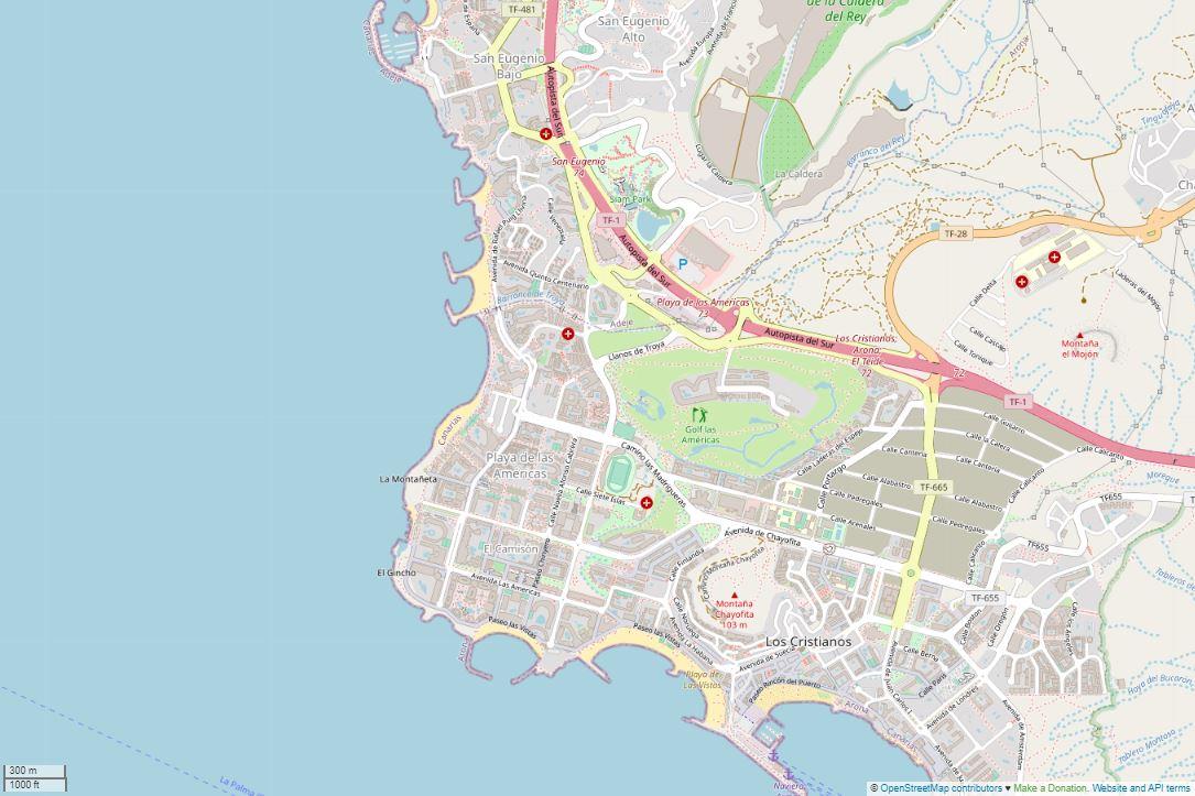 Spend your winter in Playa de las Americas - Tenerife - Is Playa de las Americas a good snowbird location 3