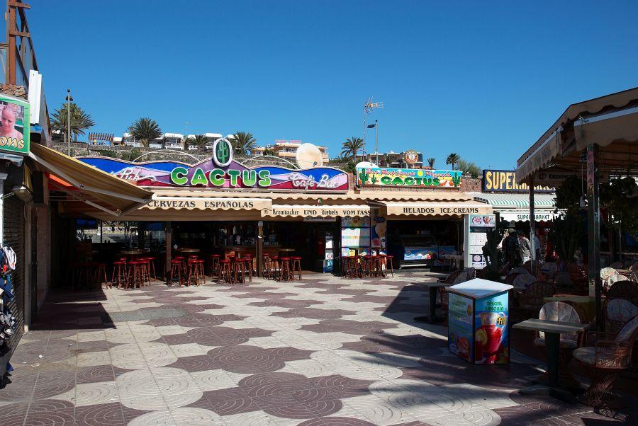 Spend your winter in Playa del Inglés - Gran Canaria - Is Playa del Inglés a good snowbird location 12