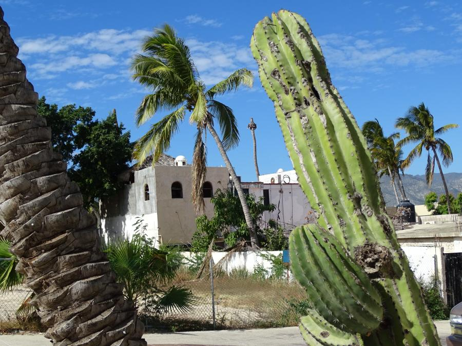 Spend your winter in San Jose Del Cabo - Mexico - Is San Jose Del Cabo a good snowbird location 12