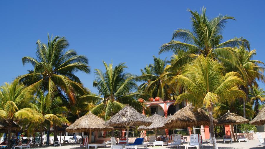 Spend your winter in Zihuatanejo - Mexico - Is Zihuatanejo a good snowbird location 12