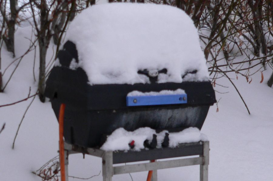 Prepare your Gas Grill for the winter 1