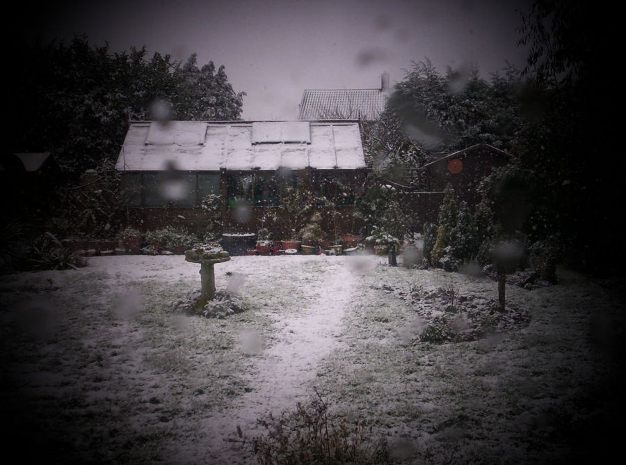 Prepare your greenhouse for the winter 1